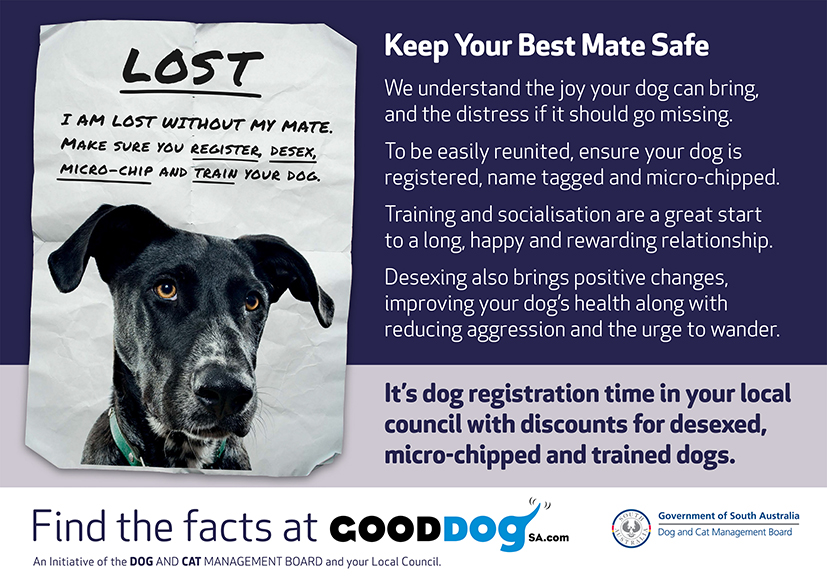 Keep Your Best Mate Safe We understand the joy your dog can bring, and the distress if it should go missing. To be easily reunited, ensure your dog is registered, name tagged and micro-chipped. More info at GoodDogSA.com