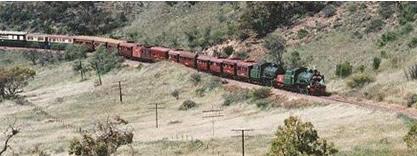 Picture of the historic steam train in Pichi Richi