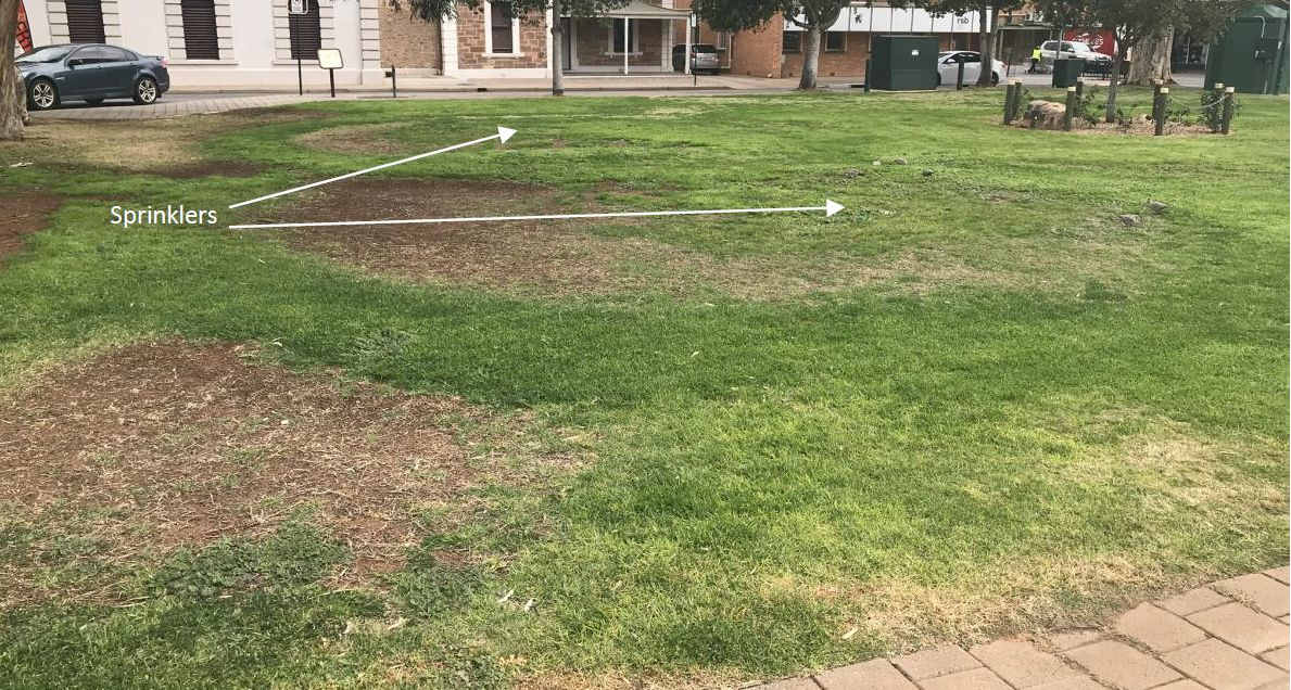 Patchy grass coverage in Gladstone Square showing patches of visible dirt, dead, and yellowed grass