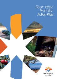 Four Year Priority Action Plan
