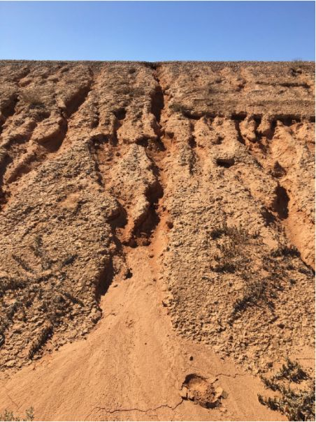 Photograph of steep dirt bank at Waste Water Lagoon showing gullies created by water erosion